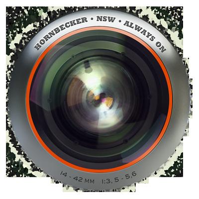 Lens horn