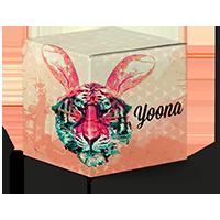 Package lens yoona